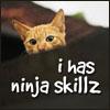 lunadelcorvo: (Ninja skills kitty)