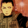 wildvision: (Shikamaru - Not in the mood for this cra)
