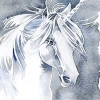 sienf: (goldseven, unicorn)