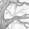 ysilme: Detail of a pencil drawing of a bare tree (Branches)