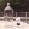 ysilme: Miniature milk carton with regular bottle (Still life with bottle)