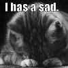 sier96: (sad)
