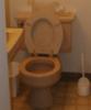 tenderpaw08: (toilet)