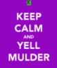 ml_griffonnage: (calm mulder)