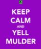 ml_griffonnage: (calm mulder)