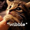 dusk037: (kitty wibble)