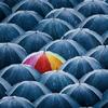 geminigirl: (Rain)