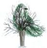 jmathieson_fic: bird in a tree watercolour by sid (sid)