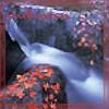 belayano4: (Autumn)
