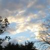 firsttiger: (sky)