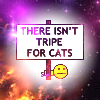 queenseptienna: (There isnt tripe for cat)