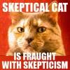 ysidro: (Skeptical Cat)