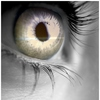 khiela: A close-up of a person's eye with fire reflection. (eye, fire)