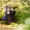 cowgrl_fic: (TARDIS)