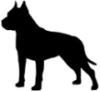raven999_13: (собаки)