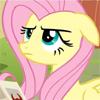 sleepyfairy: (fluttershy hmph)