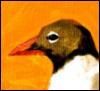 remix2: (bird2)