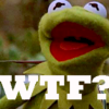 darkrivertempest: (WTF? Kermit)