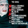 darkrivertempest: (Voldemort Checklist)