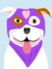 kunolacarai: (dog, pitbull)