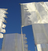 juliet: White flags against a blue sky, at the Glade Festival (glade flags)