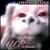 virtualinsomnia: (luck dragon (isabellecs @ LJ))
