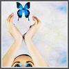 zan: (Other: Butterfly)
