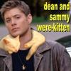 caffienekitty: (dean and sammy were-kitten)