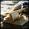 capiocapi: A book on a rock on a shoreline (Book)