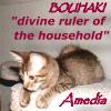 amedia: (bouhaki)