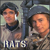 amedia: (rats)