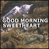 amedia: (sweetheart)