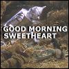 amedia: (sweetheart)