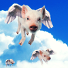 grundyscribbling: picture of flying pigs (flying pigs)