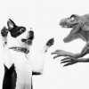 gehirnstuerm: (puppy raptor face-off)