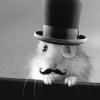 gehirnstuerm: (Old-timey Hamster)