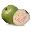 bytebuster: (Farang-Guava)