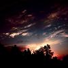synner23: (Sky)