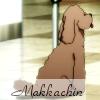 icicle33: (Makkachin text)