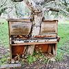 spoofer: (piano)