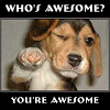 sekiharatae: You, my friend, are awesome! (Awesome)