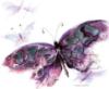 ext_565299: (purple butterfly)