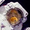 offcntr: (spacebear) (Default)