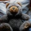 offcntr: (window bear)