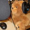offcntr: (radiobear)