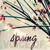 kriegsengel: (Spring)