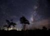 rosevalleynb: (Night sky)