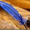 gemspegasus: (bluequill)