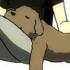icicle33: (makkachin sleeping)