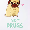 jesters: <user name=xoxomiia site=livejournal.com> → <user name=xoxohellokitty site=livejournal.com> ([ Pugs Not Drugs ])